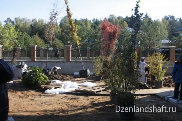 arhangelskoe1-landscaping-design-24F086BBD8-BA66-4892-A5C3-27A244C5DB58.jpg