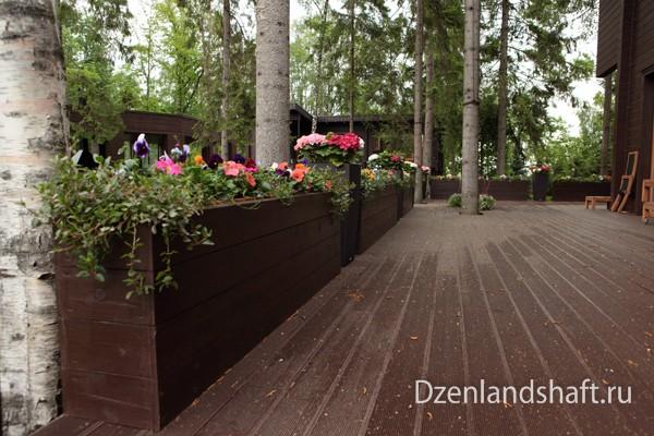 landscaping-design-newriga-1DF52B652-AF3B-4730-BE26-D064009E2539.jpg