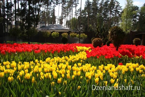 landscaping-design-viakom-18E55E20B8-4C12-4EC0-8CCB-4EF8C9A82F26.jpg