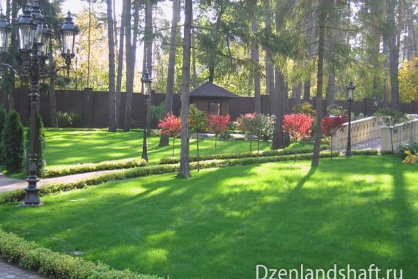 landscaping-design-viakom-22E112376-E7DE-4664-B6AC-C2C35CF0FB1C.jpg